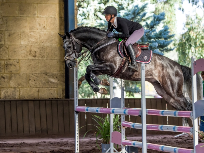 ENTRIES CLOSE EARLY DUE TO BIG DEMAND FOR SRSJC's Horseland Young Showjumping Horse Championship