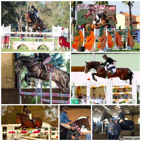 SRSJC Young Horse Champions 2011 - 2017