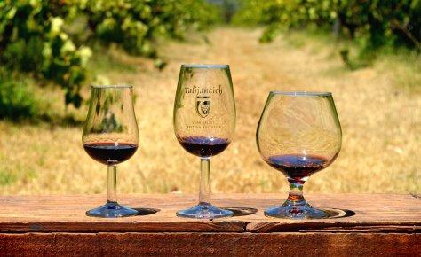 Talijancich wines photo 1.jpg
